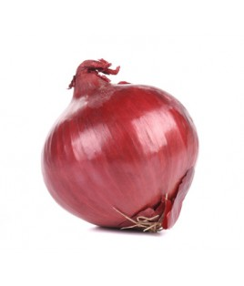 Oignons rouges doux