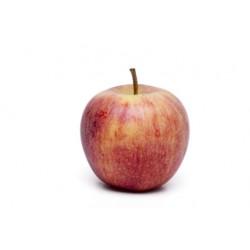 Pommes REGALYOU