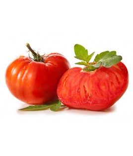 Tomates russes
