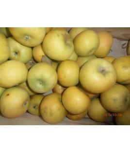 Pommes Chantecler