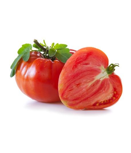 Tomates Cœur de bœuf